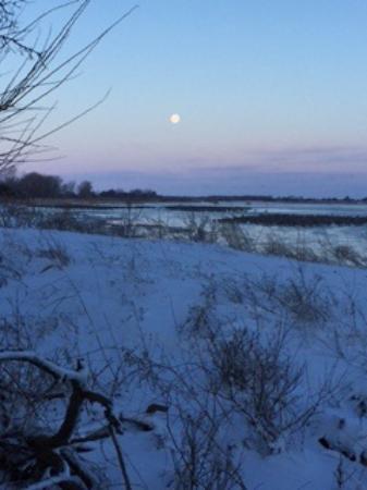 Gibbon, NE: Full moon for special light that morning