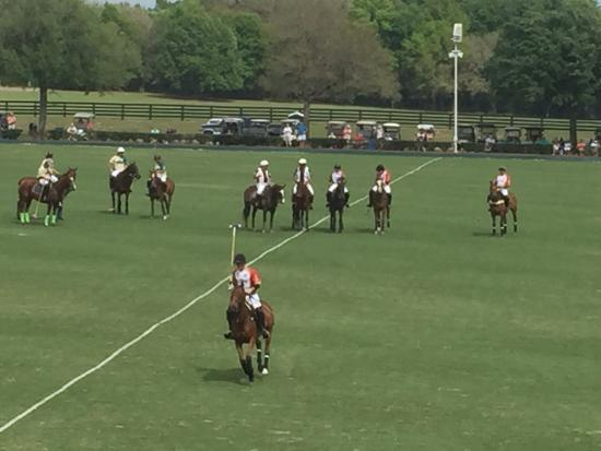 The Villages Polo Club