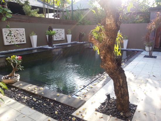 Ajanta Villas: Private pool in villa