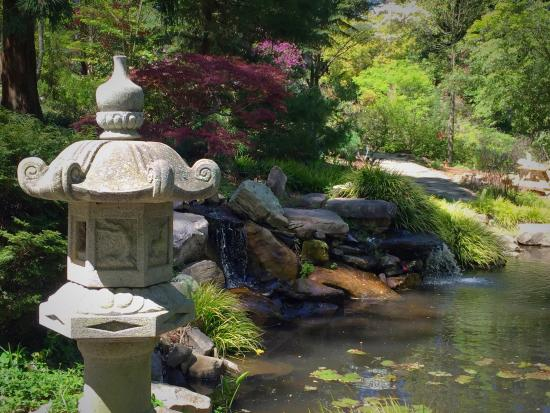 Charmant UNC Charlotte Botanical Gardens: Photo1