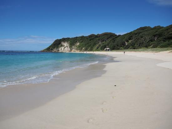 Pinetrees Lodge: Ned's Beach