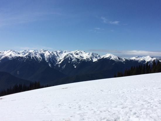 Lost Mountain Lodge: photo1.jpg