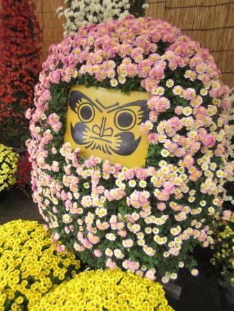 Bunkyo Chrysanthemum Matsuri