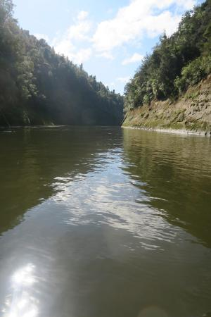 Pipiriki, Nowa Zelandia: Calm Kayaking on Whanganui River