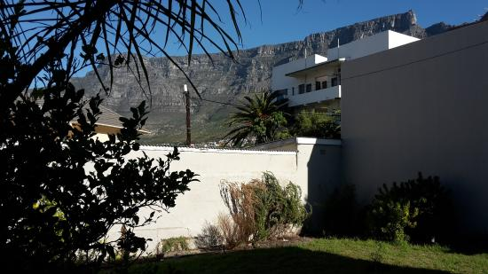 The Lions : Table Mountain from the garden