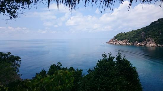 mango bay boutique resort koh tao picture of mango bay boutique rh tripadvisor com au