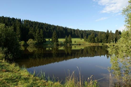 Saignelegier, Switzerland: Etang