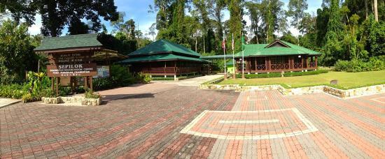 Best Borneo Tours