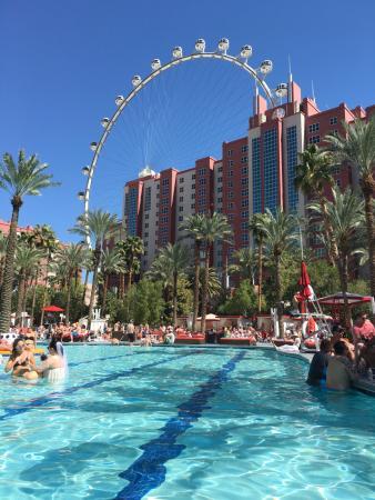 day beats pool picture of flamingo las vegas hotel casino las rh tripadvisor com