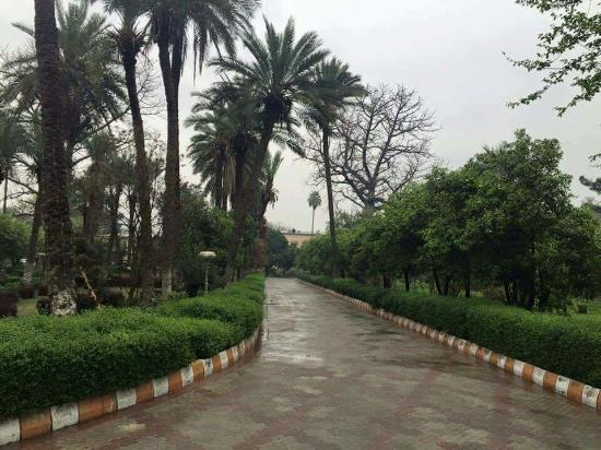 Jalalabad, أفغانستان: Eidga Musjeed