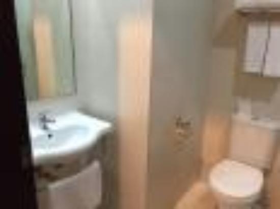 Pinnacle Hotel: room toilet