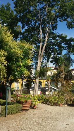 Giardino dei semplici di firenze desde el exterior for Giardino orto botanico firenze