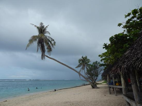 Lalomanu beach from the fale...