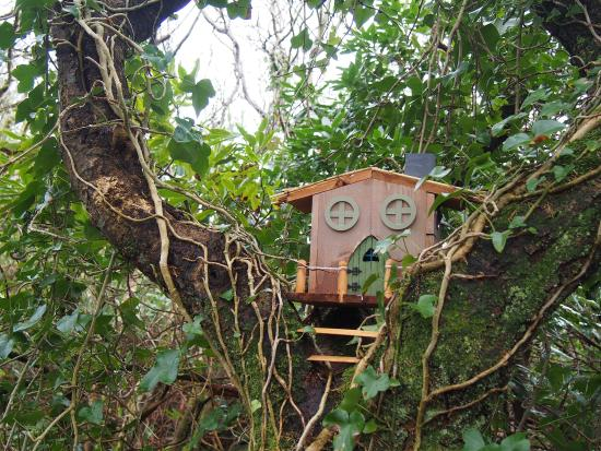 Woodland Faerie Trail: Faerie Cottage, The Valley House Achill