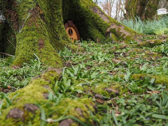 Woodland Faerie Trail: Faerie Door, The Valley House, Achill Island