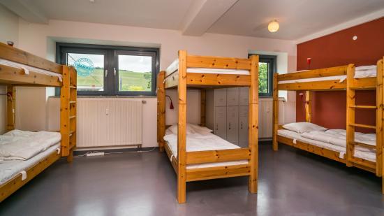 Babelfish Hostel: Dorm