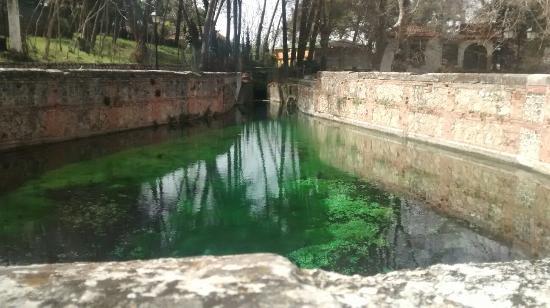 Alfacar, Spanje: Vistas del restaurante y del manantial cristalino