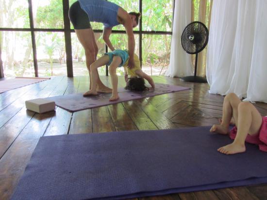 Firefly Yoga & Massage : Yoga class