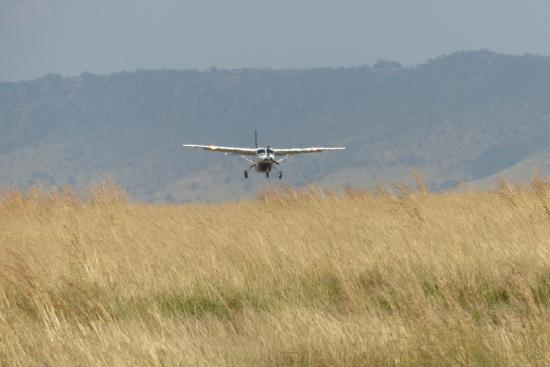 Mara Serena Safari Lodge: Plane coming into land on the airstrip