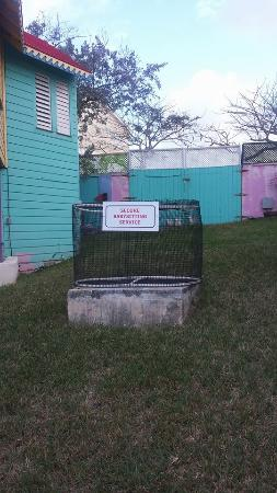 Compass Point Beach Resort: Love this fun little piece of humor on the resort property :)