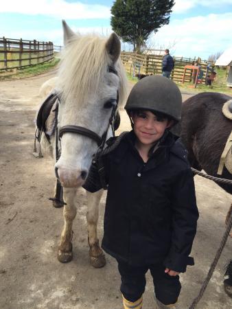 Mullacott Equestrian Centre: photo2.jpg