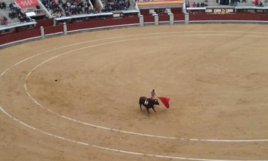 Plaza de Toros las Ventas: 20160403_181709_large.jpg