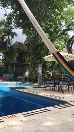 Hotel Casa Tucan 사진