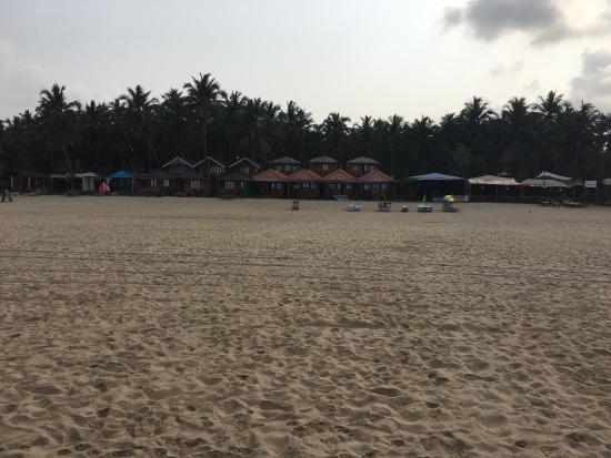 Om Sai Beach Huts Photo