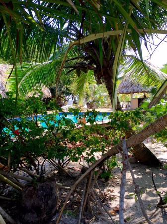 Miller's Landing Resort: photo2.jpg