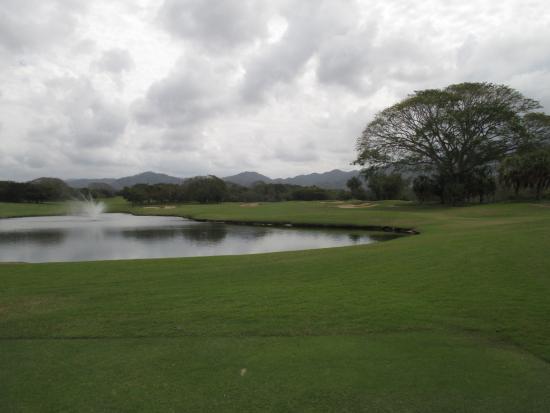 瓦拉塔港高尔夫俱乐部