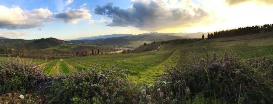 Pelago, Ιταλία: Il Quartino