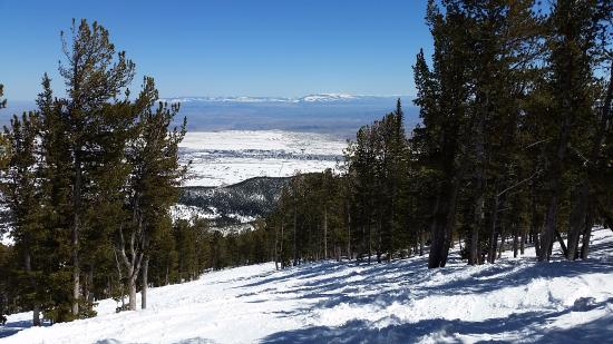 """Red Lodge Mountain: Midway down the run """"Barriers"""" un-groomed """"blue"""" run"""