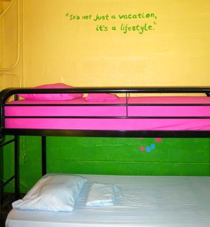 Rhoda's Guest House and Tillett Hostel: Bunk Beds in shared dorms