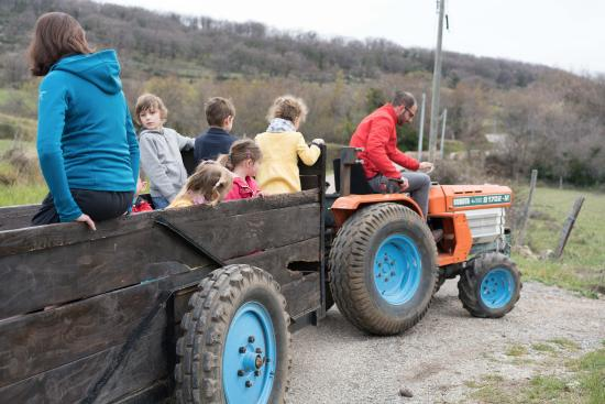 Cabrieres, Francia: This is the morning tractor ride to the animals