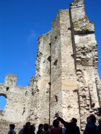 Saissac, ฝรั่งเศส: Restos de la torre homenaje