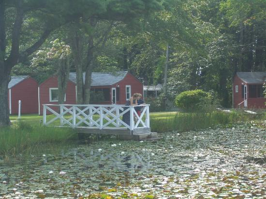 Seahorse Resort: Pond and cottages
