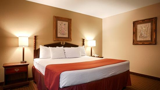 Quality Inn & Suites : Single king room