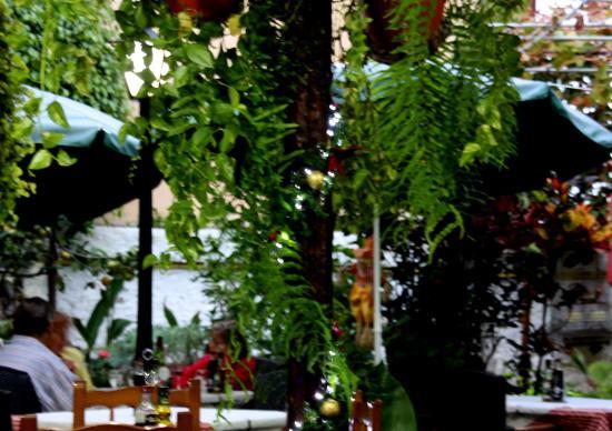 getlstdpropertyphoto  Bild von Meson los Gemelos, Puerto de la Cruz