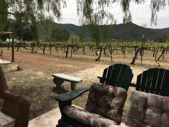 Warner Springs, CA: Shadow Mountain Vineyards & Winery