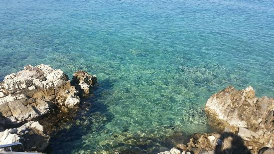 Vila Milcetic: Beautiful clear sea