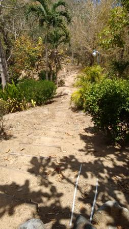 Arnos Vale, Tobago: Beach path - stretch first! :P