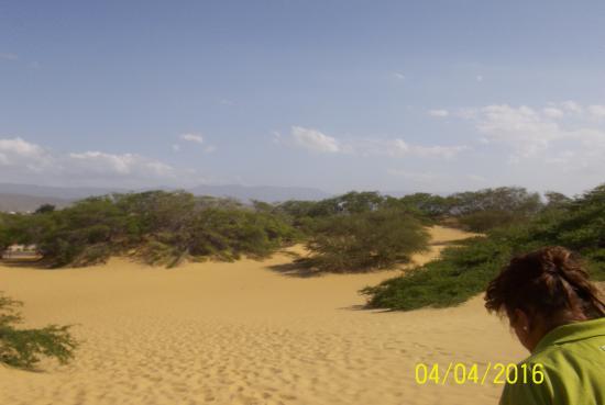 Medanos de Coro National Park: Médanos de Coro National Park