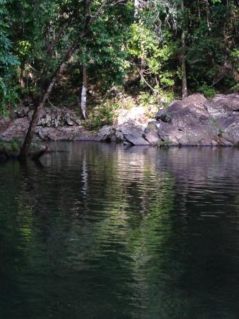 Platypus Bush Camp : The 'swimming pool' - nice but not exactly a pool. Would swim there again though - beautiful.