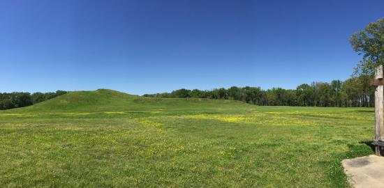 Poverty Point State Historic Site: Panoramic doesn't really show the size.
