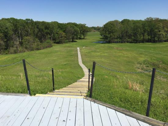 Poverty Point State Historic Site: Looking down from the top