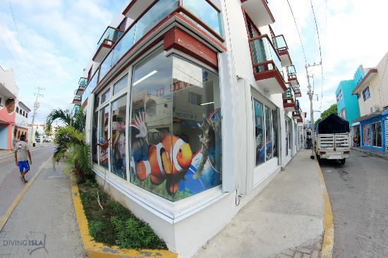 Dive Life Isla Mujeres