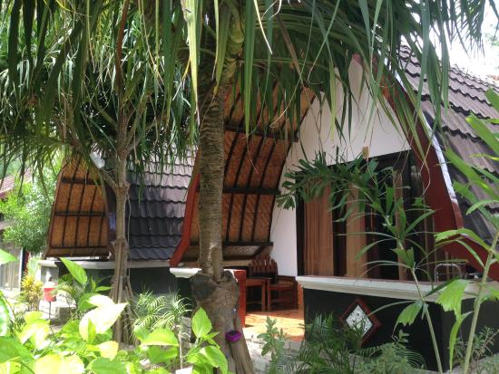 warna bungalow 1 hotel reviews gili trawangan indonesia rh tripadvisor co za