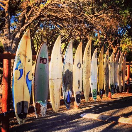Prevelly, Avustralya: The Surfboard Fence