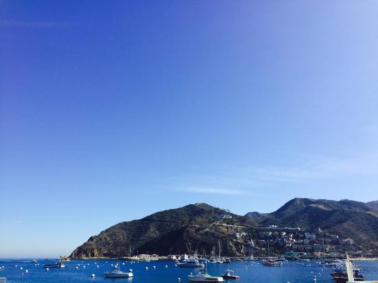Catalina Island Chamber of Commerce & Visitors Bureau: Catalina Island Harbor