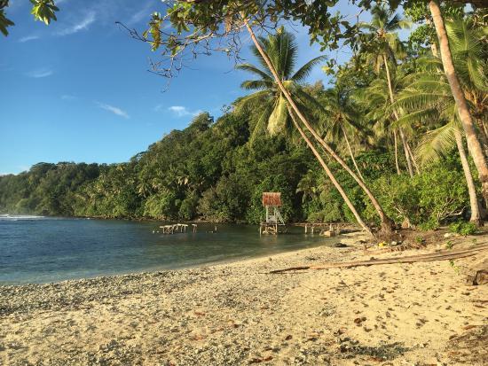 Gatokae Island, Solomon Adaları: photo2.jpg